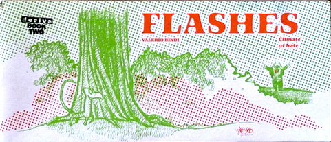 Flashes cover